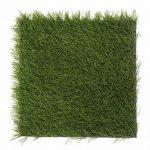 003 power grass suni cim 768x768 1