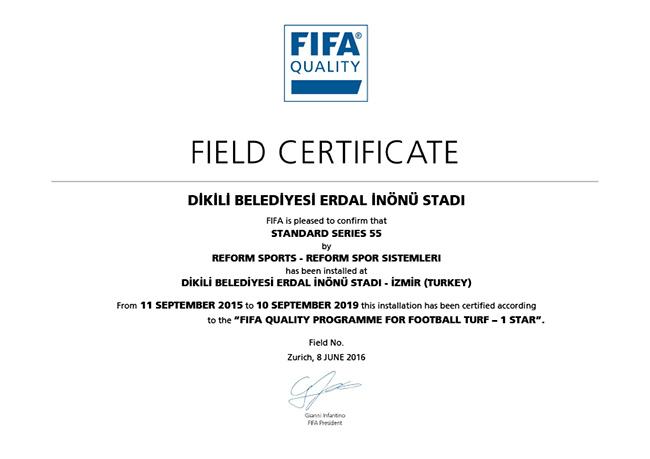 31 fifa1 dikili belediyesi erdal inonu stadi 2016
